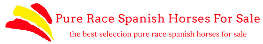 Pure Race Spanish Horses For Sale
